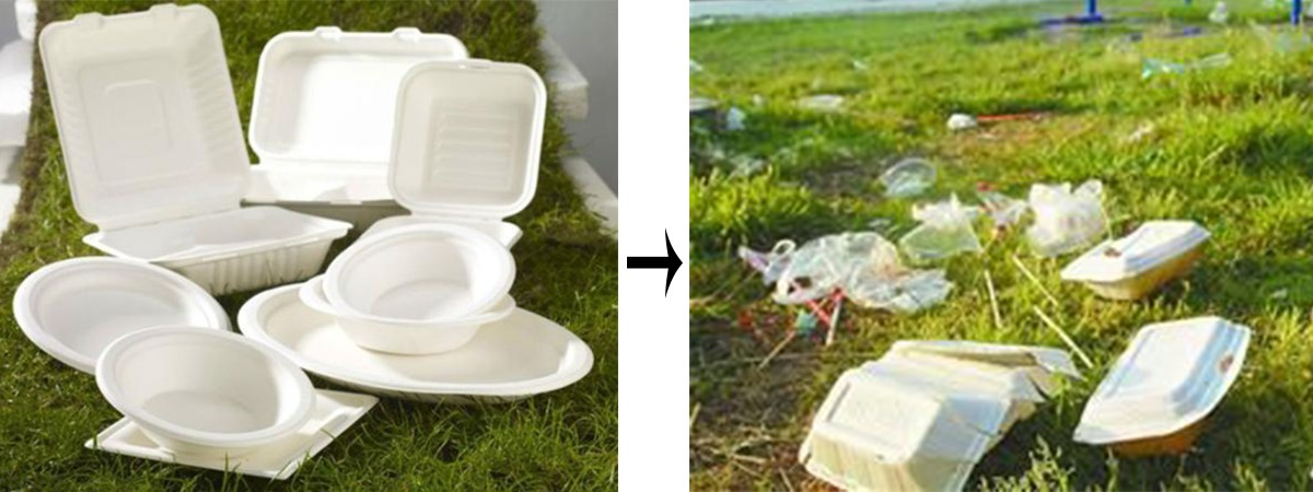 Jiamu-News About Jm Eco-friendly Plastic Meal Box