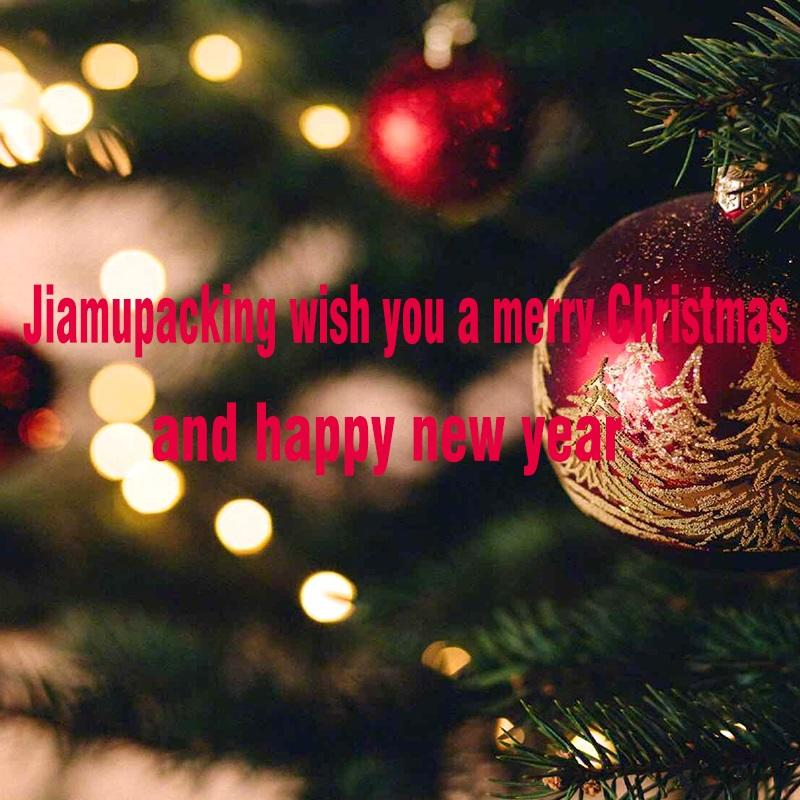 best wishes for you in Christmas