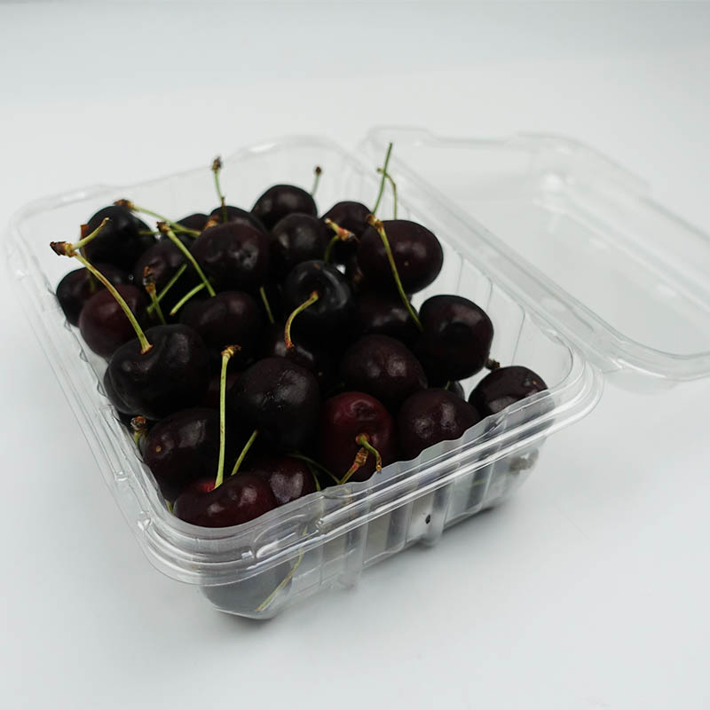 Jiamu-Find Capsule Blister Packaging 500g Pet Fresh Cherry Clamshell Container-2