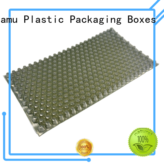 durable blister box packaging supplier for spoon knife