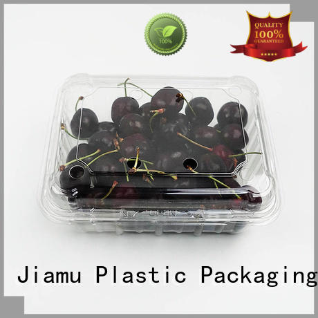 500g PET Fresh Cherry Clamshell Container